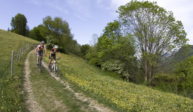 Mountainbike-Touren und -Kurse