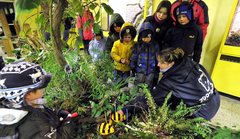 Glühwürmchen-Tour - Zoo-Führung für Kinder in Rostock