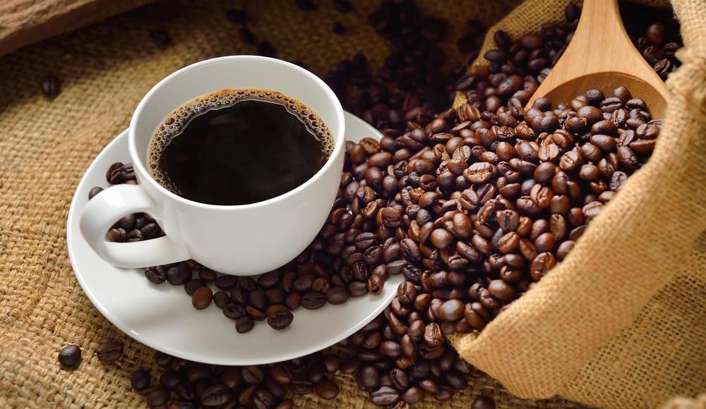Barista-Kurse und Kaffee-Seminare