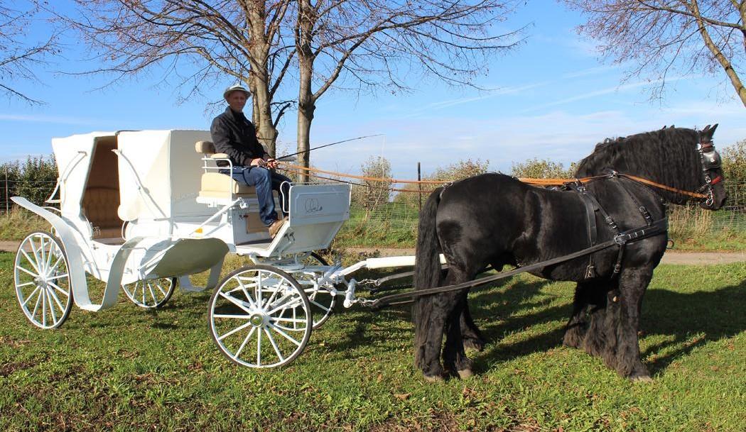 Hochzeit-Kutschfahrt in Gierstädt