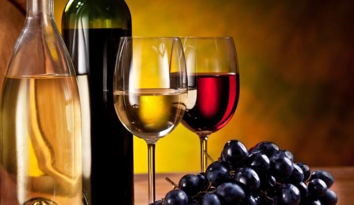 Weinbergswanderung in Wipfeld – Weingut Lother