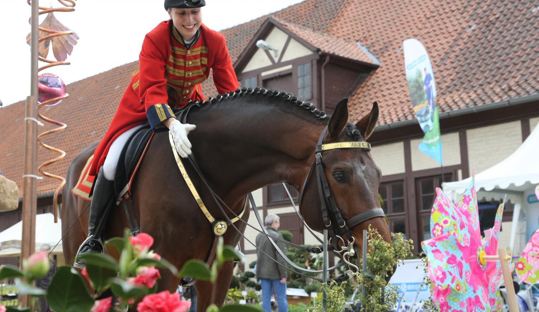 Niedersächsisches Gartenfestival in Celle