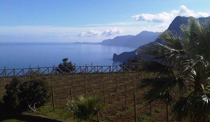 Madeira Combo Expedition - Jeep Safari und Walking Tour HD Madeira