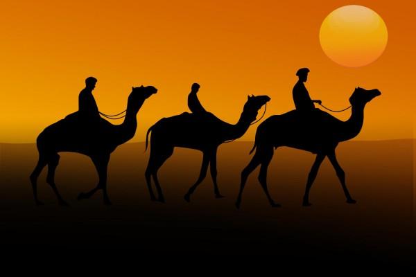 Safari mit Übernachtung bei Dubai Dubai