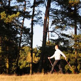 Nordic-Walking im Naturpark Hohe Mark - Indian Summer Walking in Haltern am See