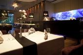 Erlebnisdinner in einem Aquariumrestaurante in Bonn