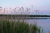 Freizeitaktivitäten in Mecklenburg-Vorpommern
